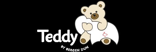 Bergen Dun Teddy logo